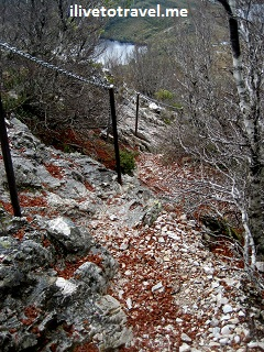Trail on the way up to Cradle Mountain, Tasmania