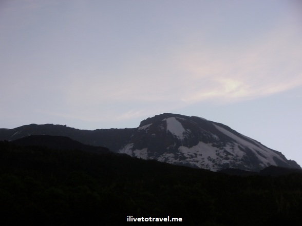 The summit of Kilimanjaro from Machame Camp