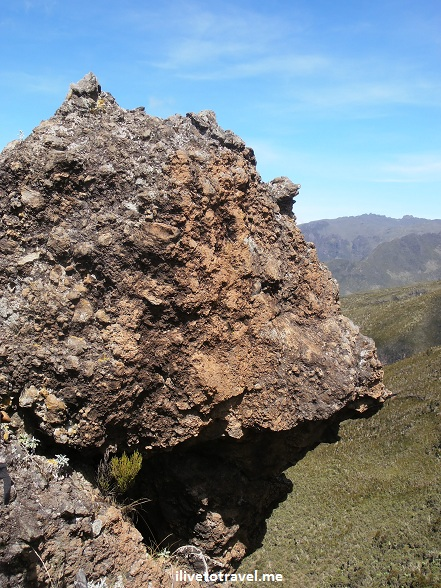 Rock in Mt. Kilimanjaro's moorlands