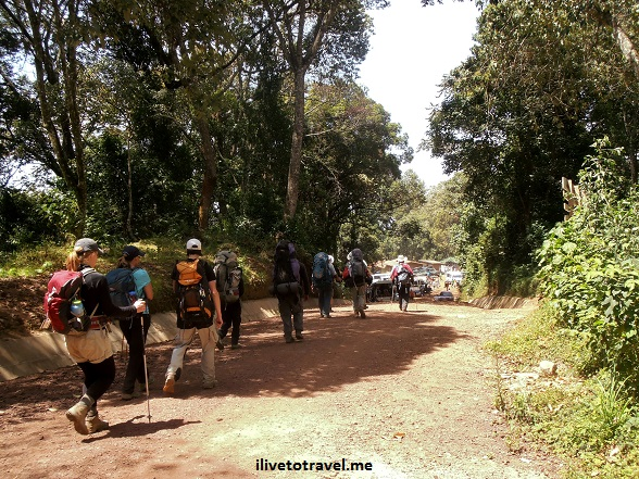 Exiting the Mweka Route trail to hiti Mweka Gate in Kilimanjaro
