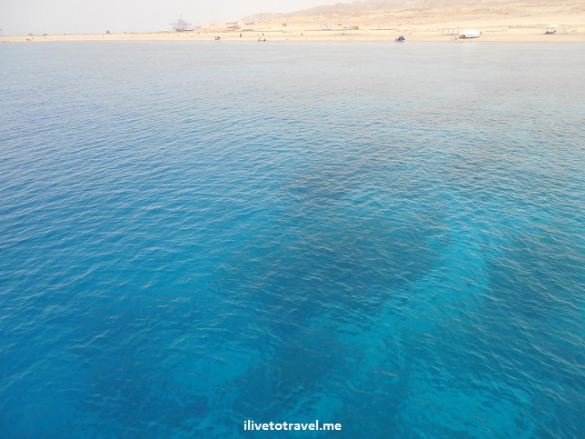 Beautiful blues in the waters of the Gulf of Aqaba, Olympus